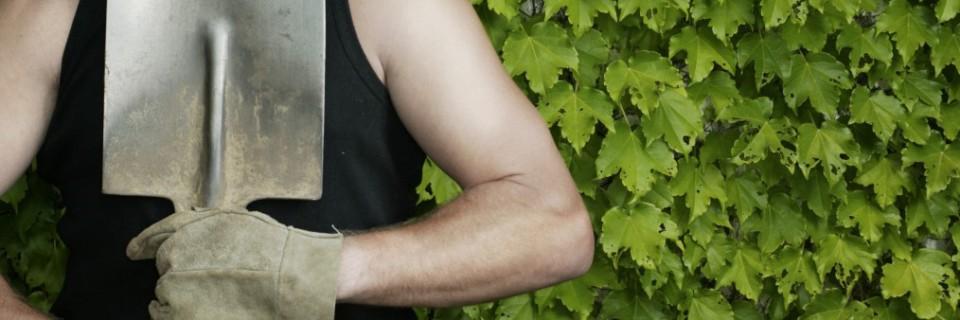 Wir sind Ihr richtiger Ansprechpartner, wenn es um Gartengestaltung, Gartenpflege oder Baumfällungen geht