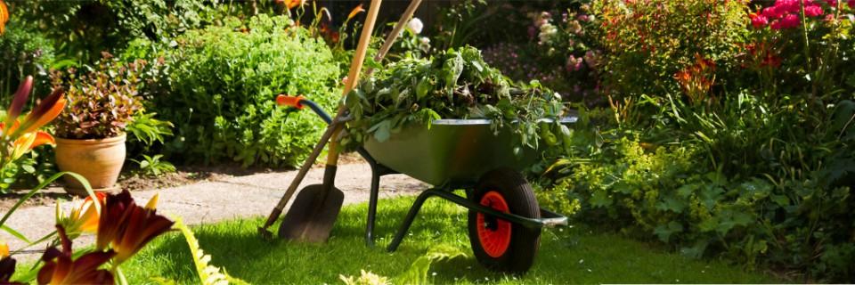 Es kommt Ihrem Garten und Pflanzen zu Gute